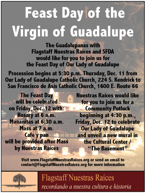 Feast Day of the Virgin of Guadalupe 12-11-14